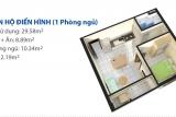 Can ho HQC Binh Minh 02 1