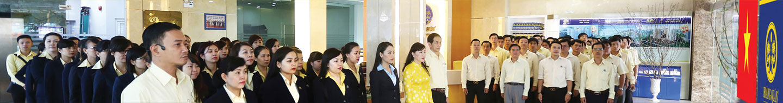 Hoang Quan Group